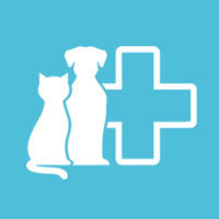 Pluto Pet Clinic, Ranchi