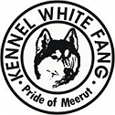 kennel white fang..