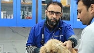 Operational Veterinary Clinics During Covid-19 Lockdown in India