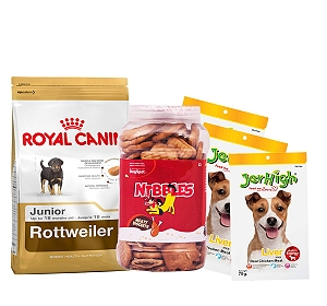Royal Canin Rottweiler Junior - 12 Kg With Treats & Biscuit