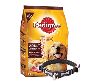 Pedigree Adult Dog Food Meat & Rice - 3 Kg With Ergocomfort Dog Collar Large-Black