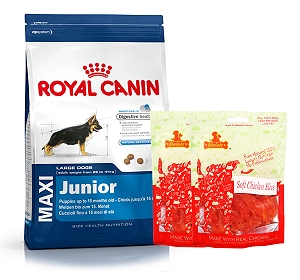 Royal Canin Maxi Junior - 4 Kg  With Chicken Slices