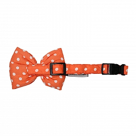 Mutt of Course Polka Salmon Dog Bow Tie- Large