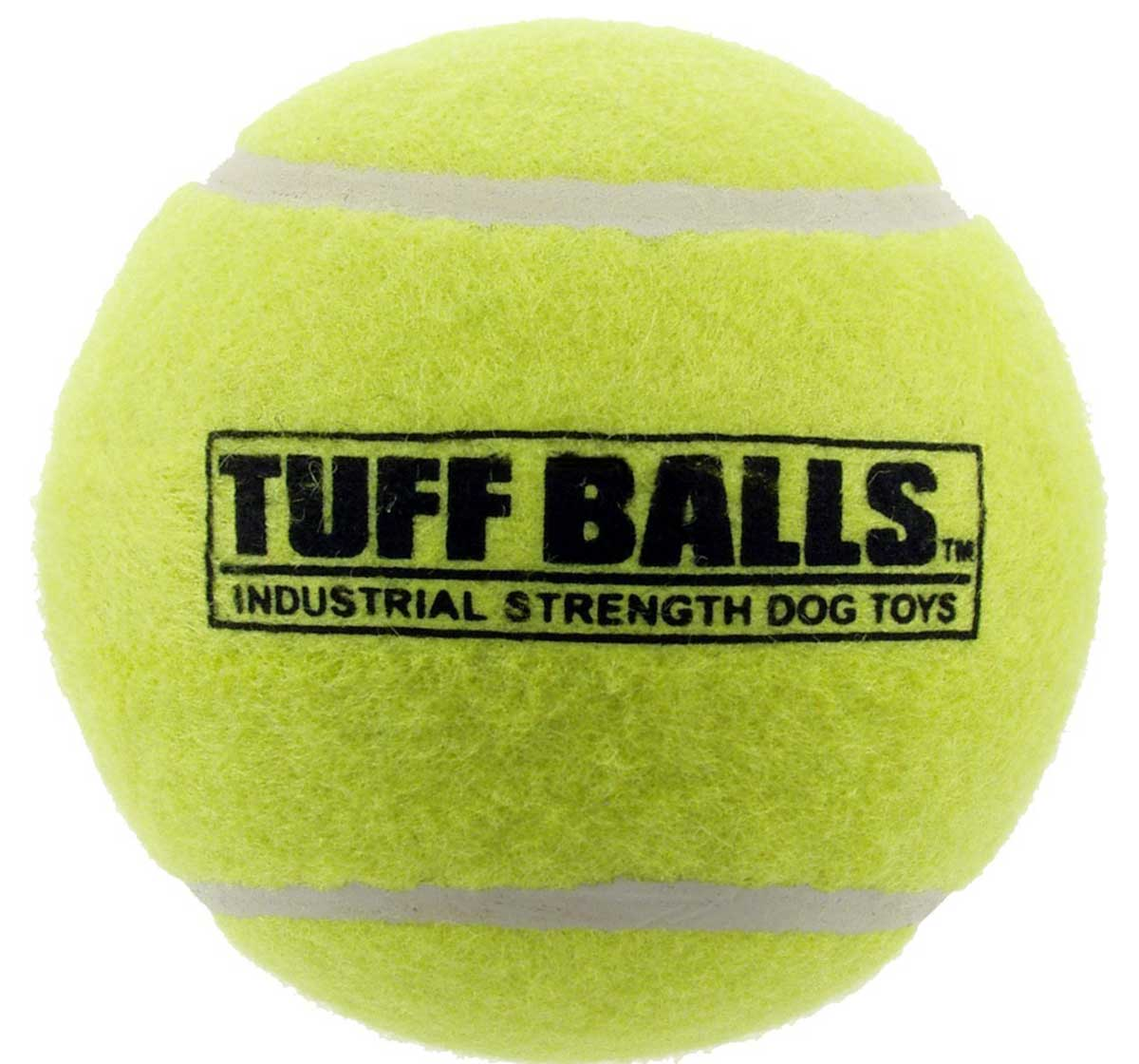 PETSPORT Tuff Mint Balls Dog Toy - 2 Pack