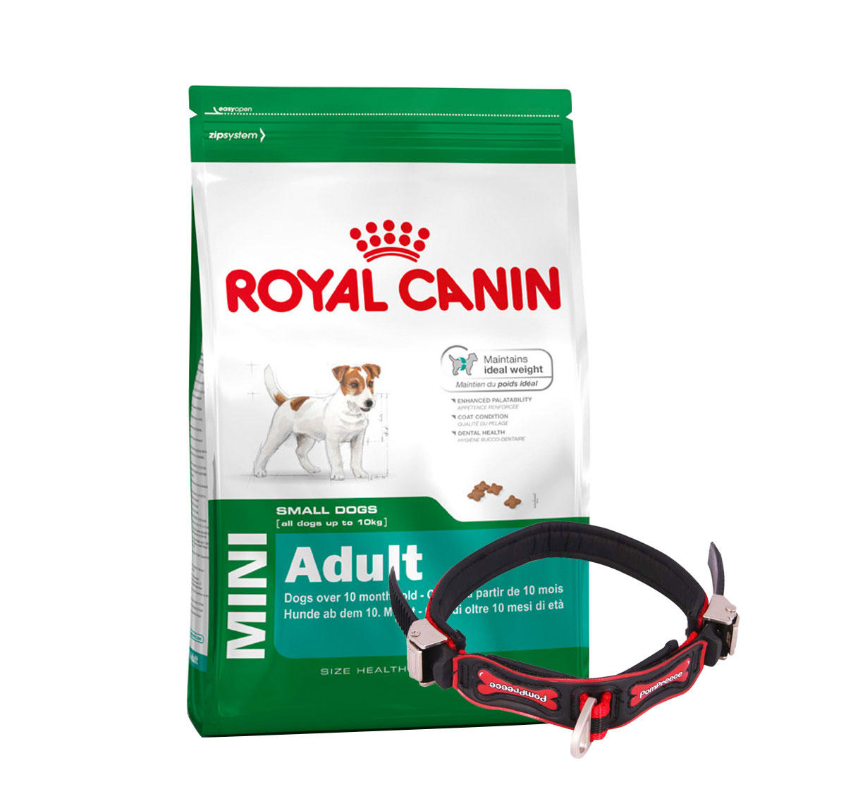 Royal Canin Mini Adult - 4 Kg With Ergocomfort Dog Collar Small-Red