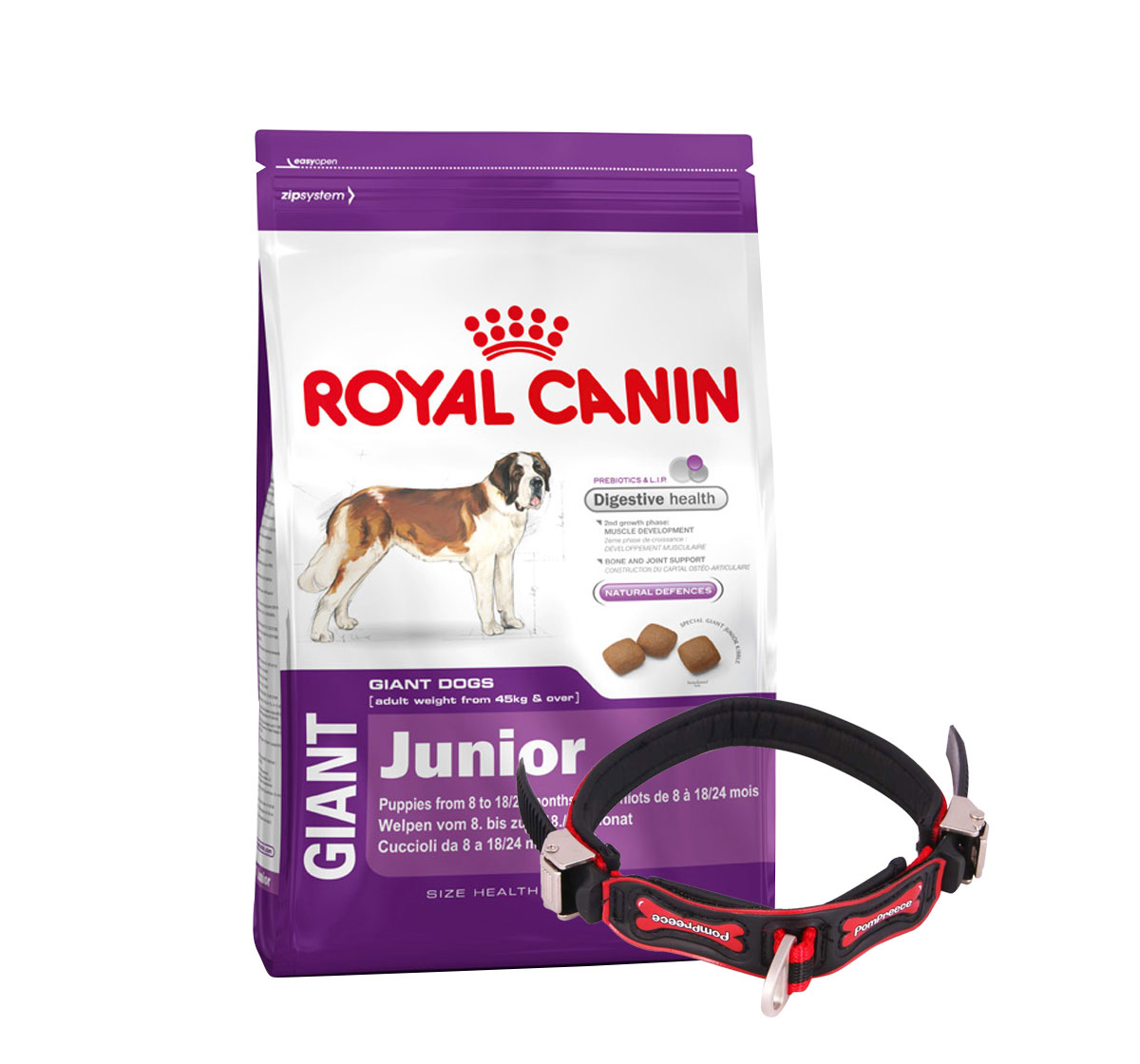 Royal Canin Giant Junior - 4 Kg With Ergocomfort Dog Collar Small-Red