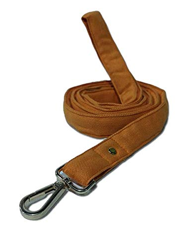Mutt of Course Gooseberry Water- Resistant Leash for Dogs Orange- Medium