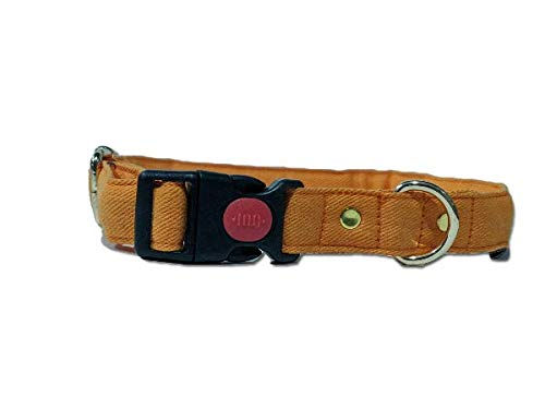 Mutt of Course Gooseberry Water- Resistant Collar for Dogs Orange- Small