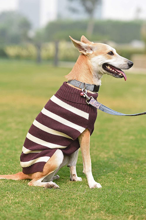 Mutt of Course Dog Sweater Purple - Large