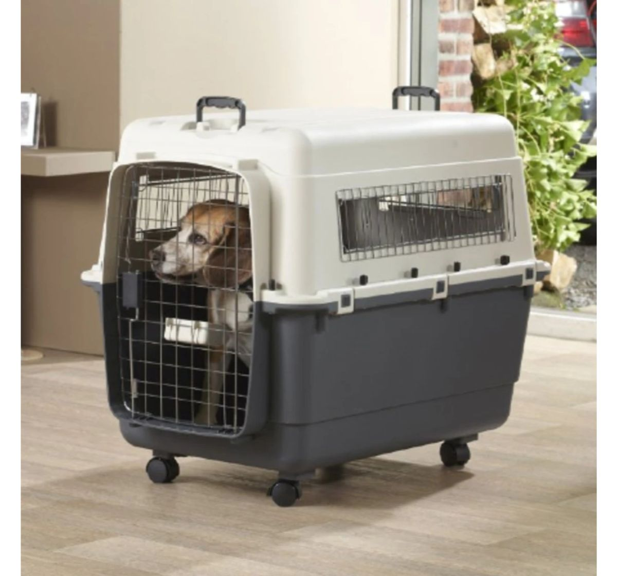 Savic Andes 8 Pet Carrier (LxBxH - 122X83X90 cm)- Ivory